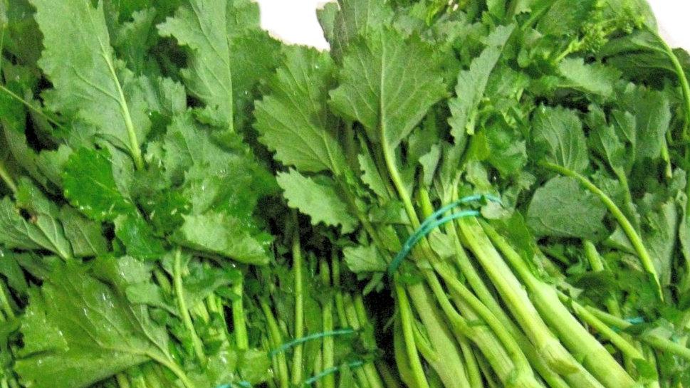 """Broccoli a foglia """"FRIARIELLI"""""""