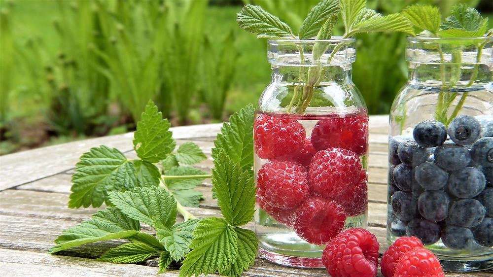 Framboiser, plante medicinale, feuilles, fruits rouges