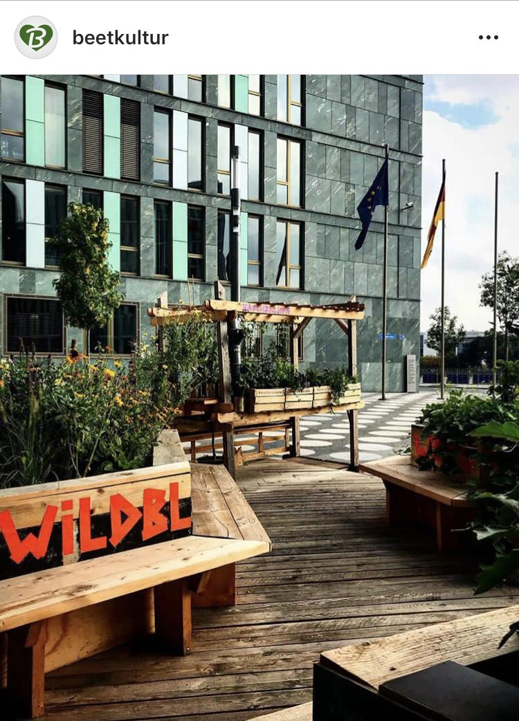 September 18 Berlinbesuch mit Gartenvibes inmitten Glas, Beton und Asphalt
