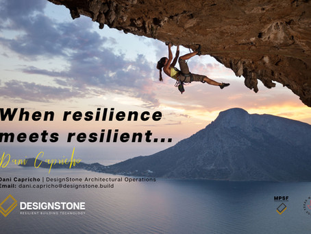 Covid-19 & DesignStone: When resilience meets resilient...
