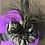 Thumbnail: Vibrant purple vintage felt Fifi with black