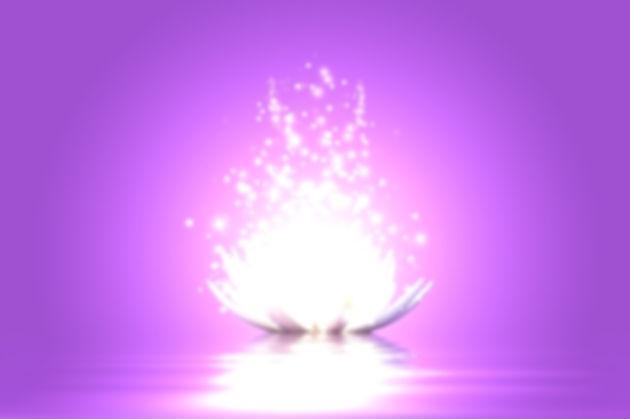lotus flwr bright.jpg