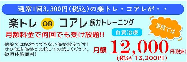 楽トレ価格.jpg