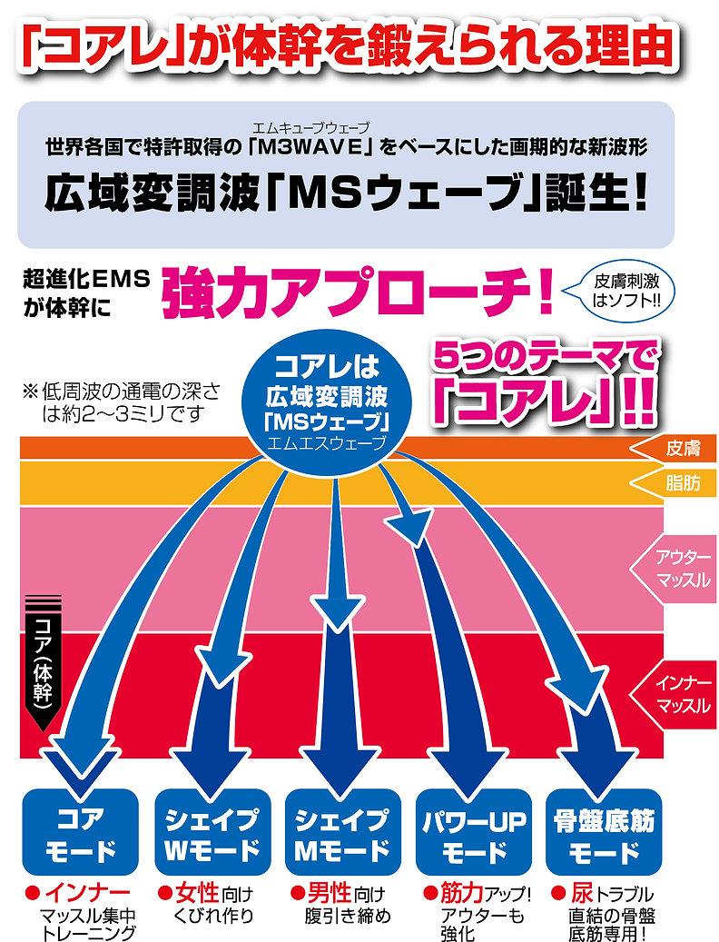 通電図.jpg