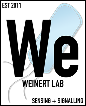 Weinert Lab Logo_notext.png