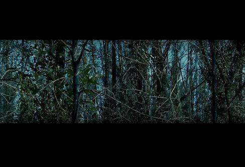 Screen Shot 2020-12-07 at 8.35.03 am.png