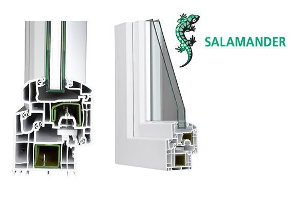Salamander 05