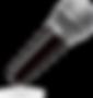 SeekPng.com_microphone-vector-png_513155