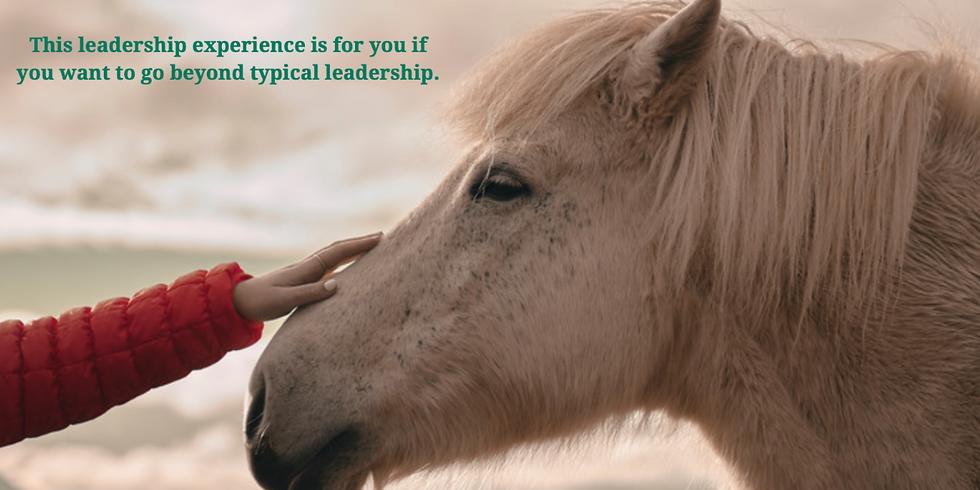 Anti-Average Leadership Through the Eyes of Horses