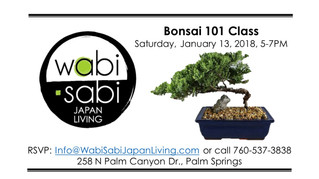 Japan Class Series - Bonsai 101 Class January 14, 2018