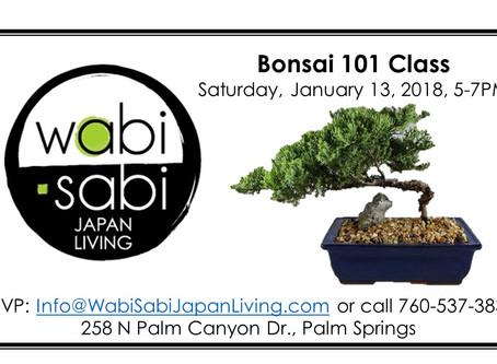Japan Class Series - Bonsai 101 Class January 14, 2018