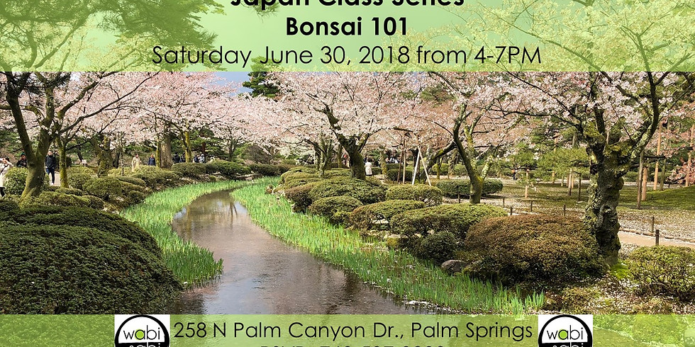Bonsai 101