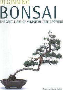 Beginning Bonsai