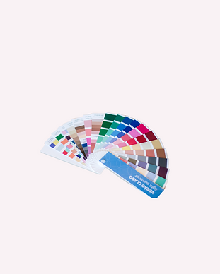 Cartela de cores - Raissa Fernandes Cons