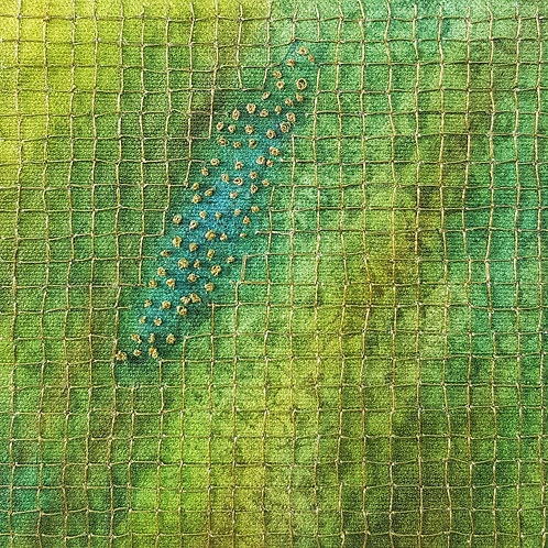 Green/Blue Net