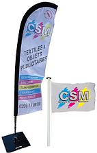 CSM BEACH FLAG.png