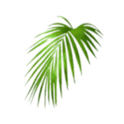 palm 3.png