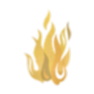 fire (pitta) GOLD.png