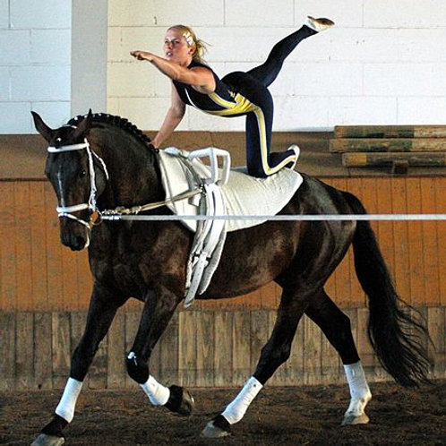 Voltige - Akrobatik hoch zu Ross