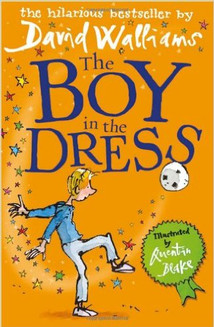 Boy in the Dress, The.jpg