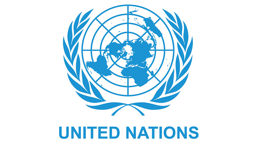 The logo of the United Nations: A flattened project of the early from the north pole flanked by olive branches