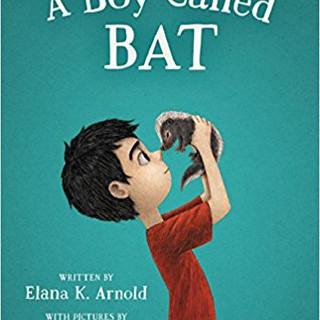 Autism - A Boy Called Bat (Autism spectr