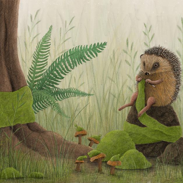 Moss the Hedgehog