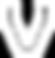 ViviPulse_logo2.png