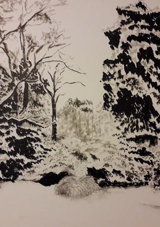Gilles Cosson_jardin enneigé-encre