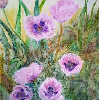 Josiane Berthelot-Pavots-Pastel Gras