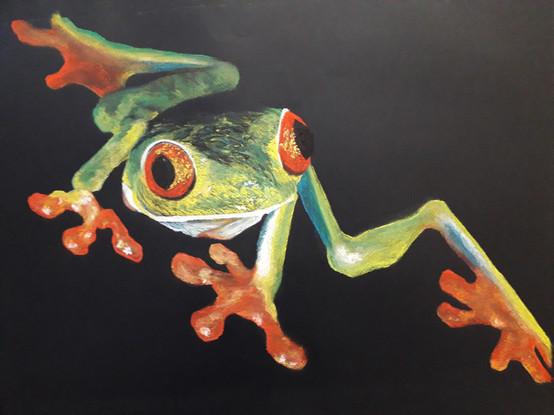Janine Cavaillé - grenouille