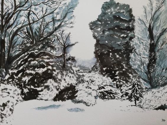 Dany Gérard-Paysage noir et blanc