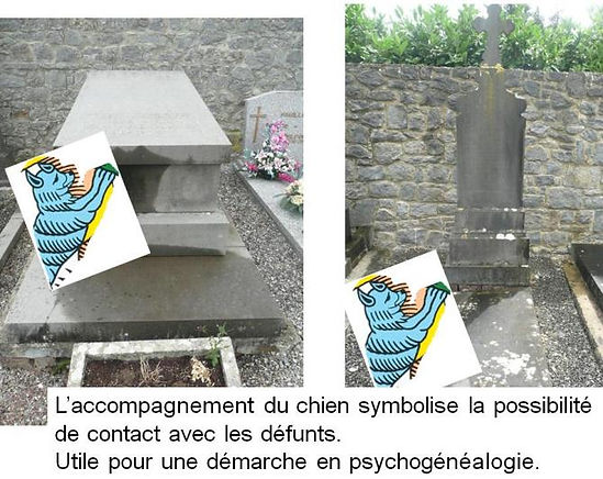 carte mat tarot psychogenealogique vincent beckers