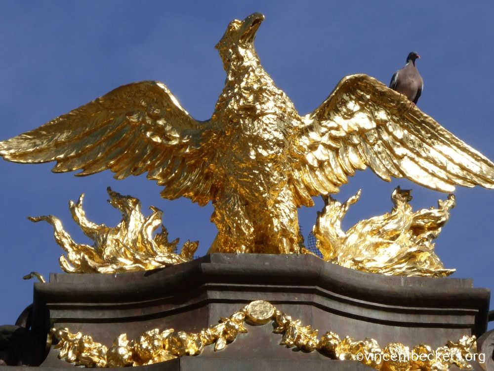 phénix, Grand-Place Bruxelles, visite guidée Grand-Place, Bruxelles, Vincent Beckers