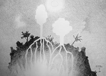 Les racines de la lumière