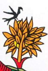 carte tarot etoile oiseau symbolique vincent beckers