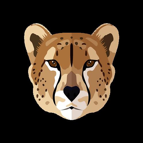 Cheetah donatie Jungle Boogie