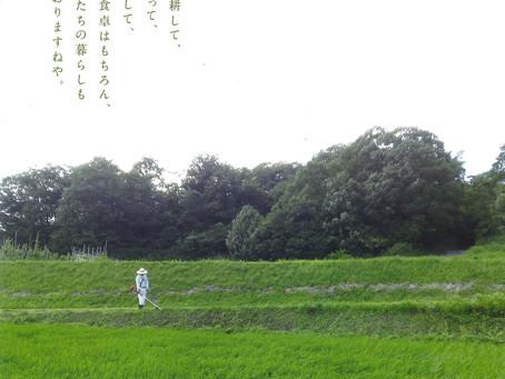 大沢町希少動物図鑑