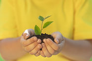 child-holding-young-green-plant-hands (1).jpg