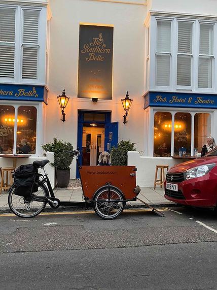 Babboe Dog E Cargo Bike.jpg