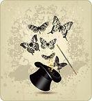 top hat butterfly.jpg