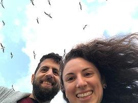 birds us.jpeg