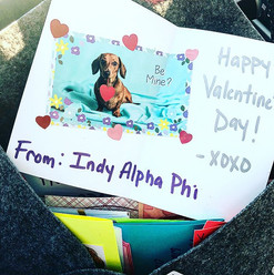 Some of the Valentine's _indyalphaphi sisters made for the patients of _peytonchildrens & _rileychildrens.jpg