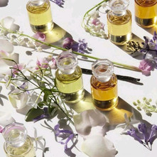 Fragrance notes and their families