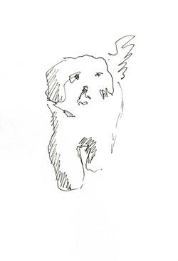 Dog II