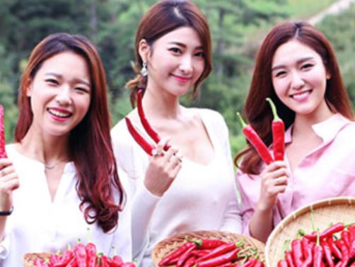 맛 기행 : 국난을 극복한 고추 (한솔 뉴스)