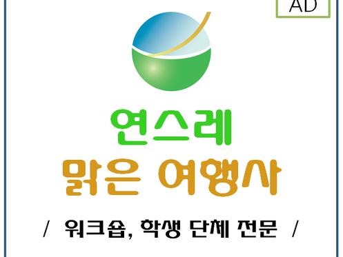 유튜버 세무 조사와 채널a 압수수색 (한솔 뉴스)