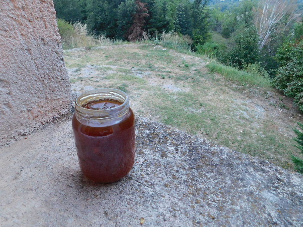 Jar of French apricot jam in windowsill over French countryside