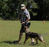 Consistency in Dog Training. Oak Ridge, Tennessee