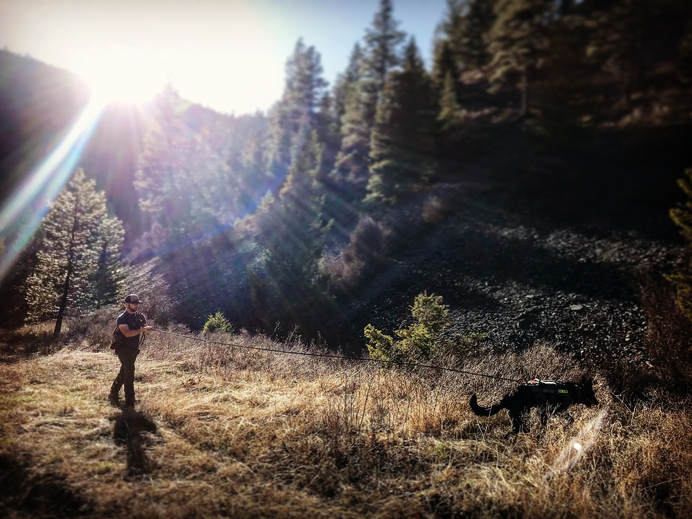Rocky Mountain Sun